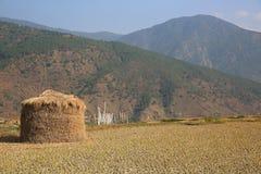 Haystack, pomnik flaga i góra krajobraz, Bhutan Zdjęcia Royalty Free