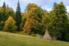 haystack Pré, morceau de la prairie, particulièrement une utilisée pour h image libre de droits