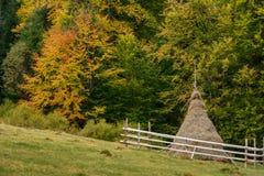 haystack Pré, morceau de la prairie, particulièrement une utilisée pour h photo stock