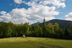 haystack Pré, morceau de la prairie, particulièrement une utilisée pour le foin carpathien Montagnes, Ukraine photos stock