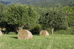 Haystack in pyrenean countryside, Aude in France. Haystack in pyrenean countryside, Aude, Occitanie in south of France stock photo