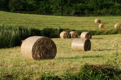 Haystack in Pyrenees. Aude,Languedoc-roussillon region of France stock photography