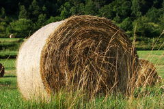 Haystack in Pyrenees. Aude,Languedoc-roussillon region of France stock photos