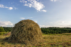 Haystack. In the rays of the evening sun on blue sky background royalty free stock photo