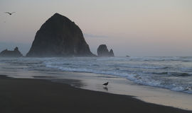 Haystack Rock royalty free stock images