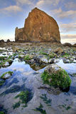 Haystack Rock at Low Tide royalty free stock photo