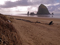 Haystack Rock in Oregon Coast Stock Images