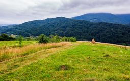 Haystack on rural field in mountains. Lovely scenery of Carpathian countryside Royalty Free Stock Photo