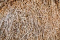 Haystack rural landscape Stock Photography