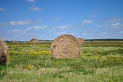 Haystack. And scenic views of nature royalty free stock photo