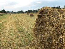 Haystack on the slanted field stock images