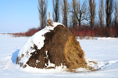 Haystack on the snow-bound field Stock Photo