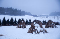 The haystack in snowfield Stock Images