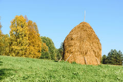 Haystack of straw on a green grass royalty free stock images