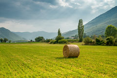 Haystack of straw in the meadow, Greece Stock Photography