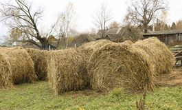 A haystack on a stretch in the old village Royalty Free Stock Images