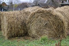A haystack on a stretch in the old village Stock Images