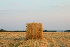 Haystack. Royalty Free Stock Images