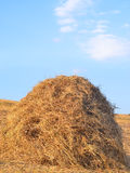 Haystack. Summer Field with Hay Bales on the Background of Beautiful Sunset. Agriculture Concept. Instagram Styled Toned Photo Stock Images