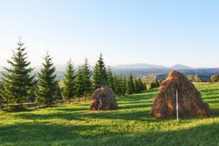 Haystack on sunset. Meadow, piece of grassland, especially one used for hay. Carpathian Mountains, Ukraine.  stock image