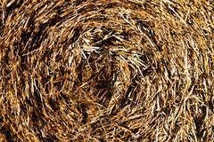 Haystack texture background Royalty Free Stock Images