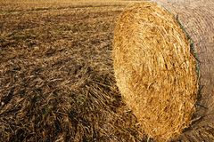 Haystack texture background Royalty Free Stock Photo