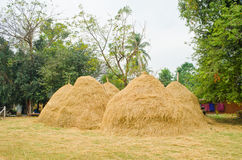 Haystack in Thailand Royalty Free Stock Image