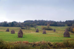 Haystack to feed cattle Royalty Free Stock Photography