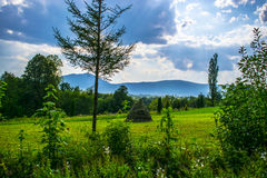 Haystack w Carpathians Zdjęcia Royalty Free