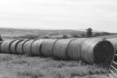 Haystack w Devon fotografia stock