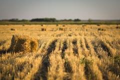 Haystack w polu zdjęcie stock