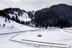 Haystack w zima krajobrazie Zdjęcia Royalty Free