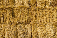 Haystack wall of dried straw Royalty Free Stock Images
