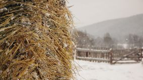 Haystack in winter on the farm under snow stock video