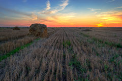 haystacks Заход солнца на поле стоковое фото rf