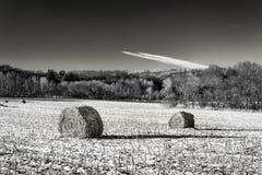 Haystacks на замороженном поле в светотеневом стоковая фотография rf