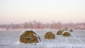 Haystacks на замороженном поле Стоковая Фотография RF