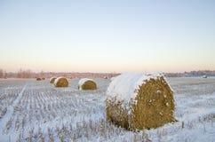 Haystacks на замороженном поле Стоковая Фотография