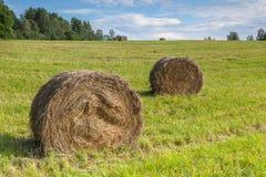 Haystacks на поле стоковое фото rf