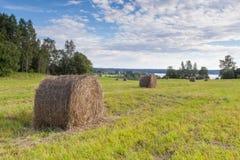 Haystacks на поле Стоковое Изображение RF