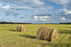 Haystacks. On the field and cloudscape stock photo