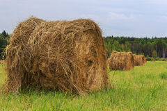 Haystacks Royalty Free Stock Images