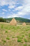 haystacks Стоковые Изображения