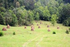 haystacks fotos de stock