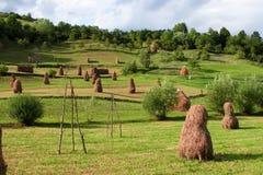 Free Haystacks Stock Photo - 15574970