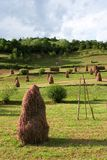 Haystacks. Several haystacks in a beautiful green environment stock photography