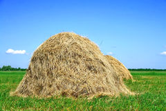 Haystacks Stock Images