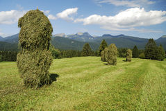 Haystacks Stock Photos