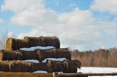 haystacks Стоковое Изображение