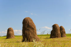 Haystacks Стоковая Фотография RF